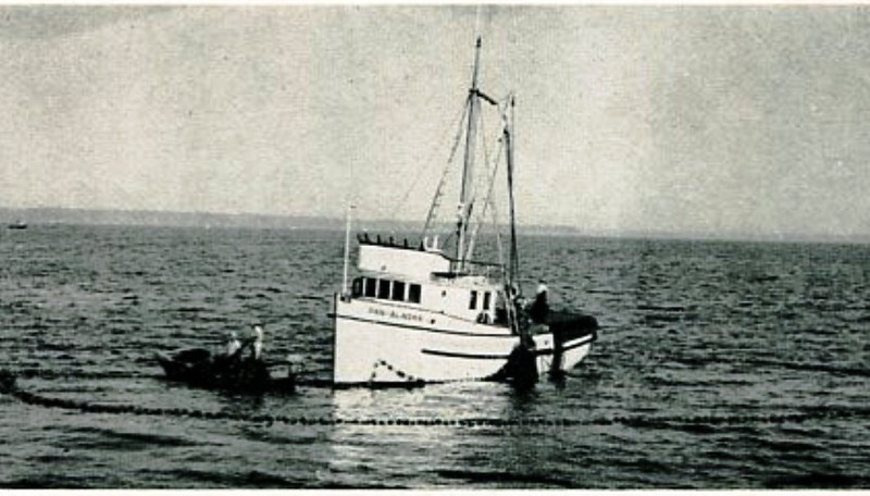 Pan Alaska,Built 1948 Marine View Tacoma,A R Ahlberg,Johnnie Jack,Pic Taken 1951,