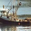 Glenda Joy,Patricia G,Cathia Rose,Built 1945 Grandy,Seattle,