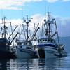 Ocean Pointe,Miss Roxanne,Angelette,Alaska Seining,