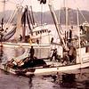 Christian,Cape Falcon,Teresa K,500 Ton Set Herring,