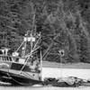 Prospector  Gulf Queen  Built 1974 Tacoma  Yakutat Gulf Fishing  Rudolph Johanson