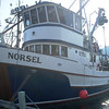 Norsel,Built 1950 Poulsbo,Poulsbo Marine ways Builder,Arthur Skaland,Peter Johnson,Nick Tarabochia Sr,Greg  Thoreson  Chris  Peterson  Stephen  Huestis  Amy Schaub