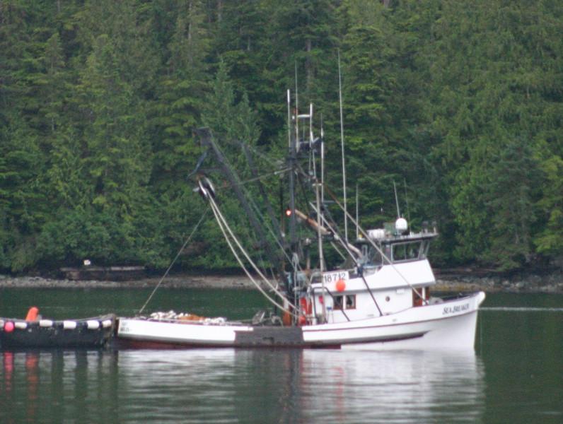 Sea_Breaker,Redwing,Built 1950 Harold Hansen Seattle,John Frey,Steve Christensen,