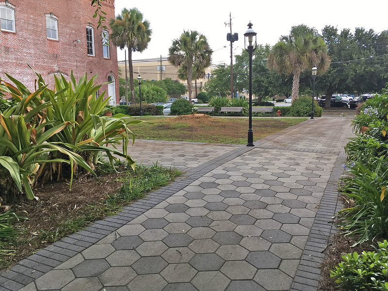 Jekyll Square East after tree is cut down 06-30-16
