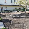 Signature Squares Jekyll Square East Re-planting 03-24-17