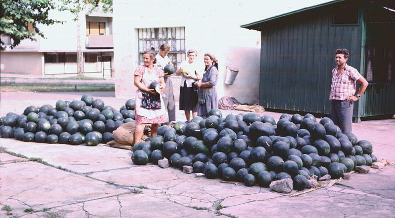 Vannmelonmarked