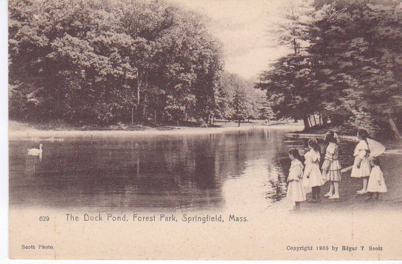 Forest Park Duck Pond