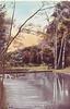 Forest Park Scene 1