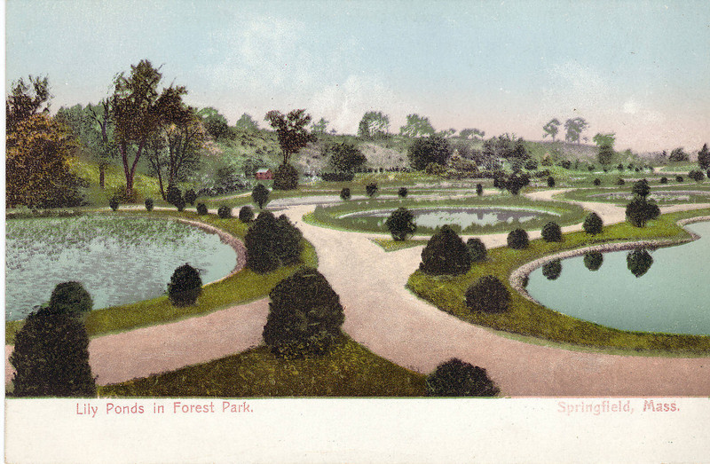 Forest Park Lily ponds  1901-07