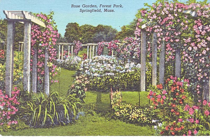 Forest Park Rose Garden
