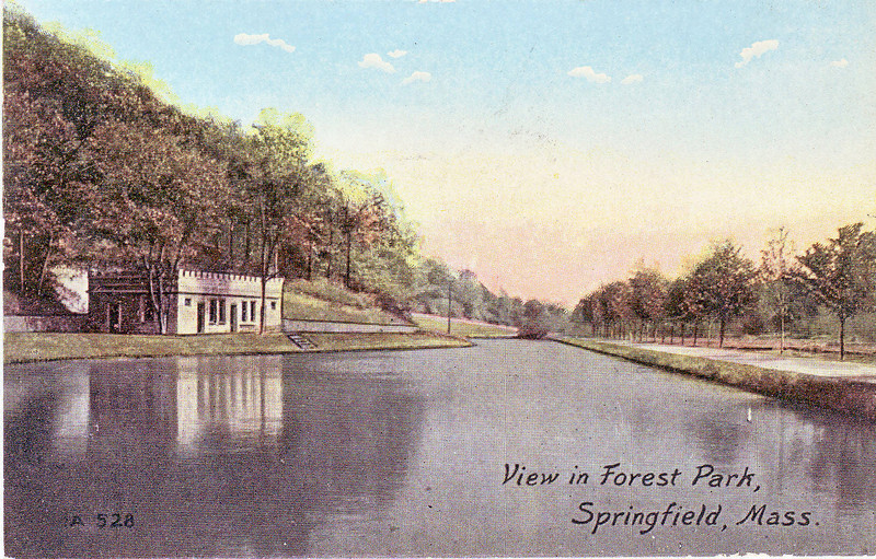 View in Forest Park