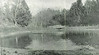 Springfield F P Upper Pond