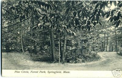 Forest Park Pine Circle