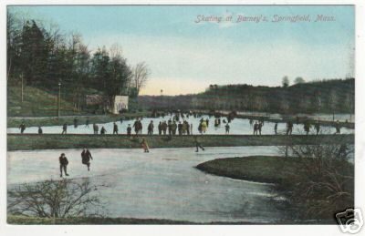 Forest Park Skating at Barney''s