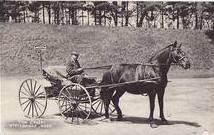 Stockbridge Horse & Buggy