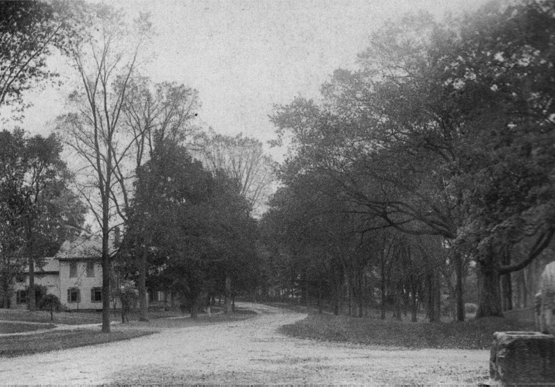 Stockbridge 1890 View Main St