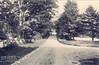 Stockbridge Curve to Glendale from Linwood