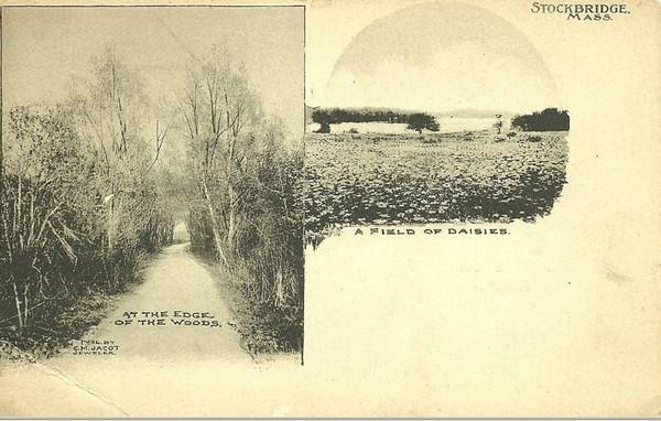 Stockbridge Early Views