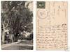 Stockbridge 1909