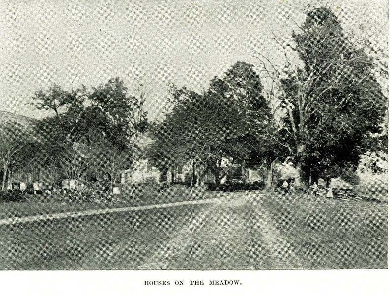 Sunderland Houses on Meadow