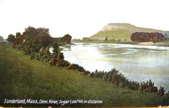 Sunderland Mt Sugarloaf 2