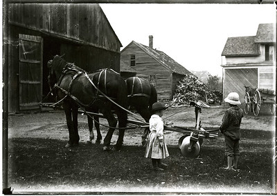 Sunderland Farm Life