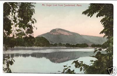 Sunderland Mt Sugarloaf