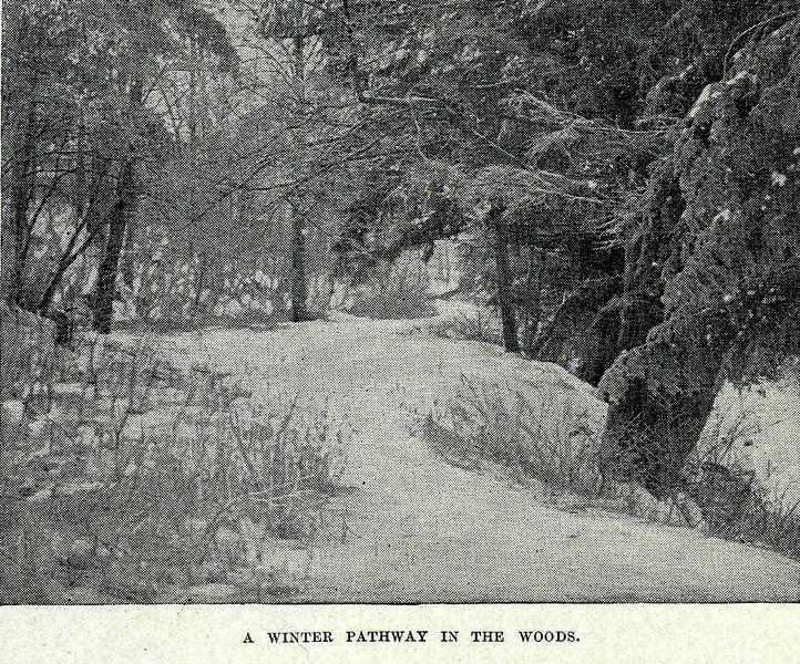 Sunderland Winter Pathway