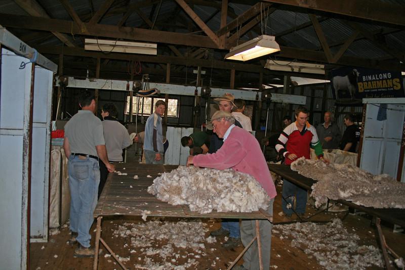 Shear Mania July 09 013