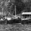 Rover,Built 1910,David B,Built 1929,David D,Built 1923,Pic Taken Shoal Bay,Lopez Island, San Juans,