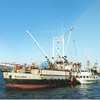 Balaena   BSP 1047 U S A  Jimbo  Built 1944 San Franciscio  Alaska Packers  Gary Wiggins  S Daniels  Trident Seafood