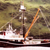 Pacific Lady Built 1951 Portland  Jon Milletich   Richard Hinde  Ole Harder  Tendering Salmon and Herring  Alaska