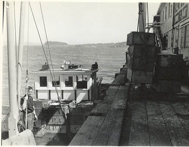 1946_Thelma_CRPA