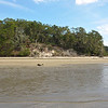 Terrapin Point on Cumberland Island, Georgia on the Intracoastal Waterway (ICW) - 09-28-11 - Documenting