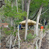 Terrapin Point on Cumberland Island, Georgia on the Intracoastal Waterway (ICW) - 10-19-11 - Archaeology Dig