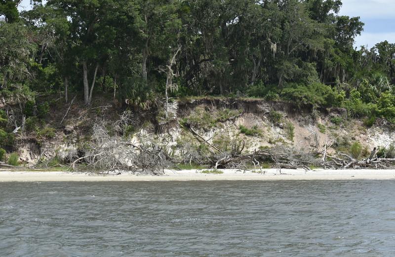 Jekyll Island Boat Tours - Terrapin Point 07-28-19