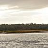 Terrapin Point area of Cumberland Island off the Intracoastal Waterway (ICW), Georgia 11-29-10