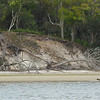 Terrapin Point on Cumberland Island, Georgia on the Intracoastal Waterway (ICW) - 04-02-11 - Note severe erosion in the bluff