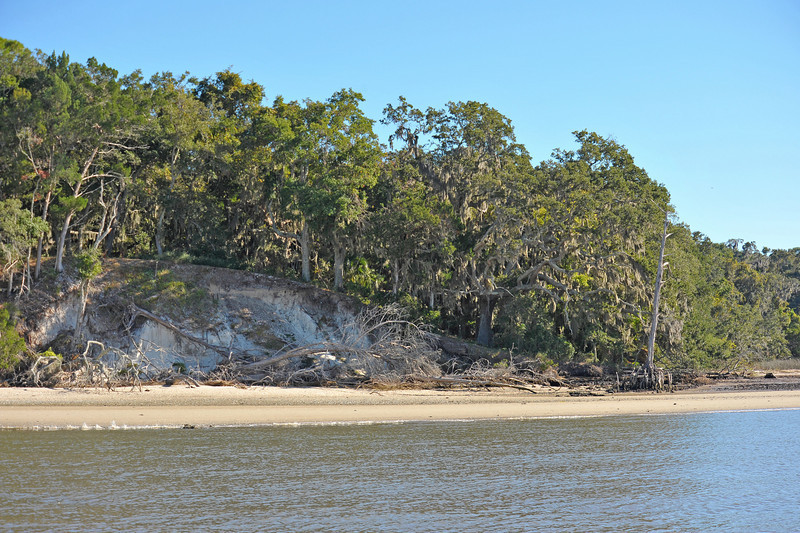 Terrapin Point on Cumberland Island, Georgia on the Intracoastal Waterway (ICW) - 11-09-10 - Note severe erosion in the bluff
