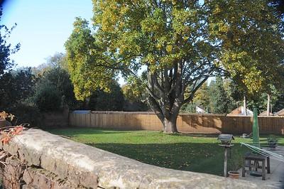 A small back garden now for original house of grandpas