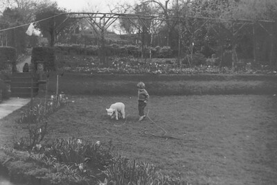 Carolyn Bisco plays with a friends pet lamb in the mid 60's while our pet cat sits at the top of the steps