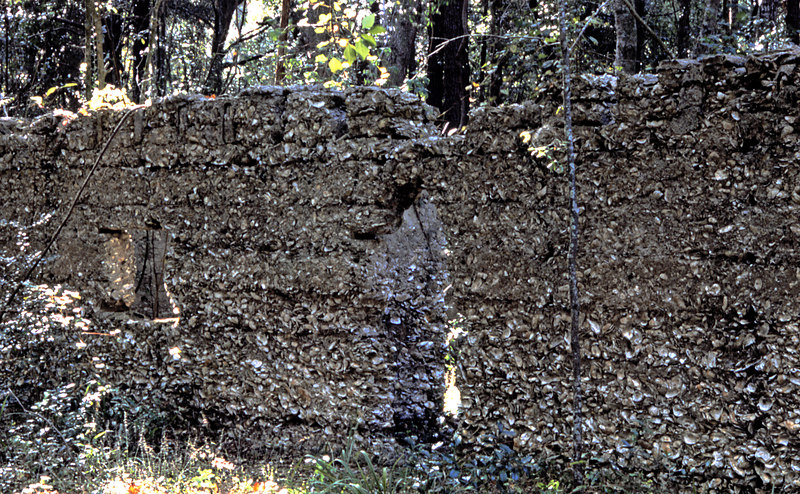 25 Tabby slave house ruin in the Thicket in McIntosh County, Georgia