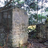 44 Distillery and Secondary Building or Sugar Mill ruins in the Thicket in McIntosh County, Georgia