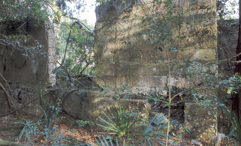 36 Distillery and Secondary Building or Sugar Mill ruins in the Thicket in McIntosh County, Georgia