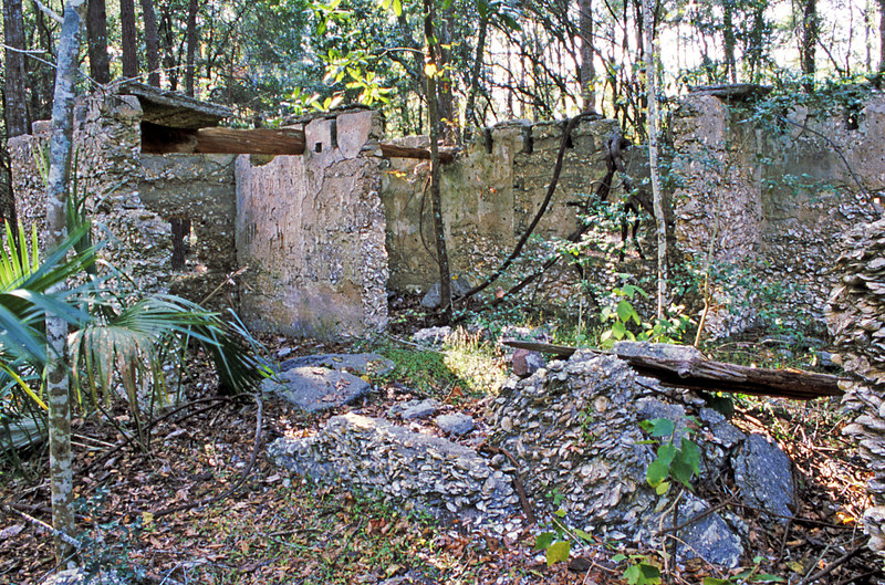 13 Tabby slave house ruin in the Thicket in McIntosh County, Georgia