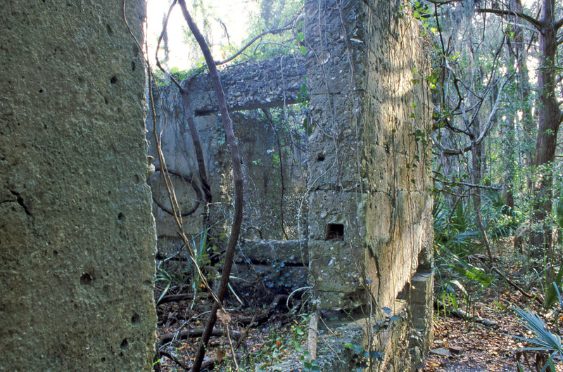 35 Distillery and Secondary Building or Sugar Mill ruins in the Thicket in McIntosh County, Georgia