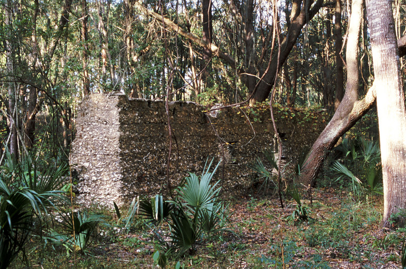 26 Tabby slave house ruin in the Thicket in McIntosh County, Georgia