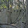 12 Tabby slave house ruin in the Thicket in McIntosh County, Georgia