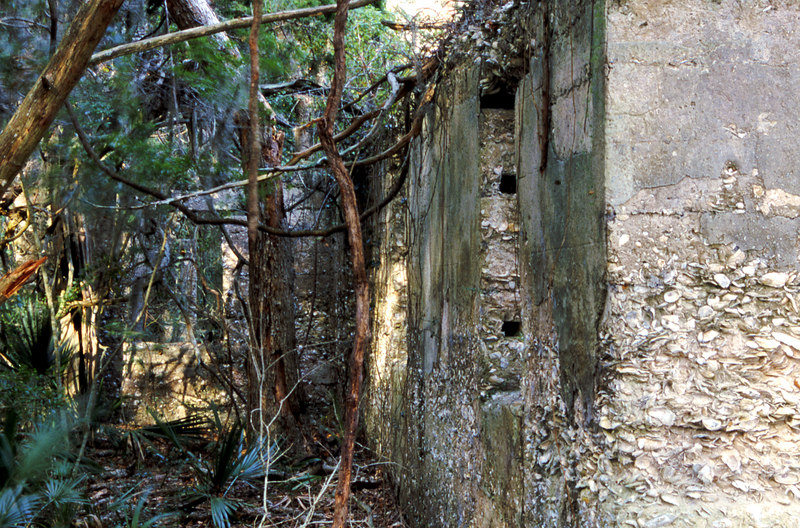 40 Distillery and Secondary Building or Sugar Mill ruins in the Thicket in McIntosh County, Georgia