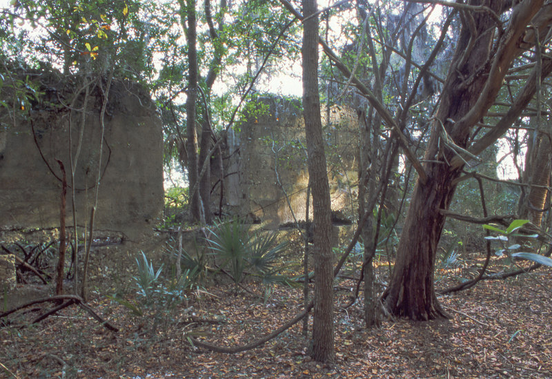 33 Distillery and Secondary Building or Sugar Mill ruins in the Thicket in McIntosh County, Georgia